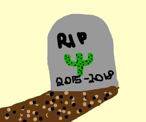[RIP CACTUS 2015-2018]