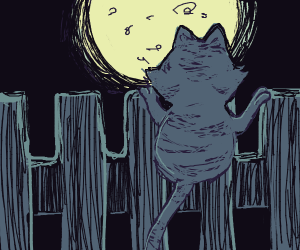 Cat on a fence staring at the moon