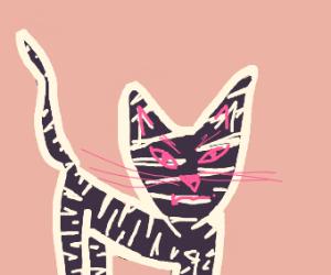 Spooky patterned cat