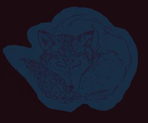 sleepy blue fox