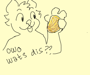 furry thing looking at patato