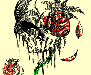 Black and white rose with a skull