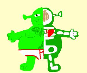 learn the body of Shrek!