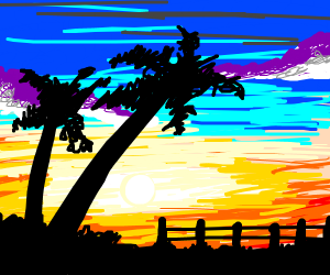 pretty sunset with fence and palmtrees