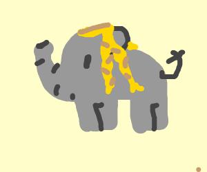 Elephant with glorious blonde locks!