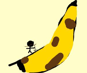 Man climbing a skyscraper sized banana
