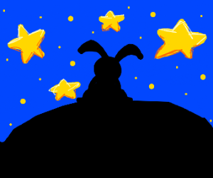 rabbit looking at the stars