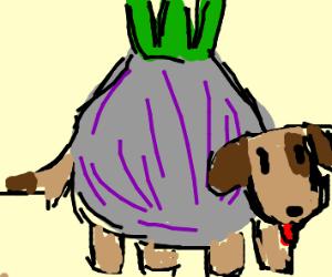 Onion Dog