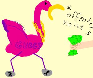 flamingo wants her money back