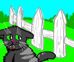 Sad vampire cat in front of a fence