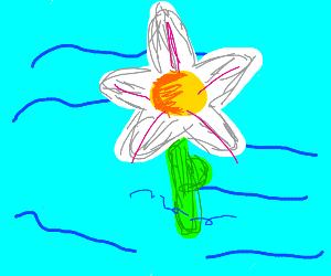 a flower drowning (so sad 10 likes)