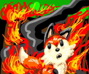 Afraid fox : forest is on FIRE !