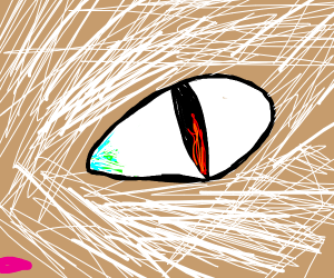 Fire in a snow lion's eye