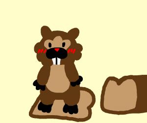Bidoof on Bread