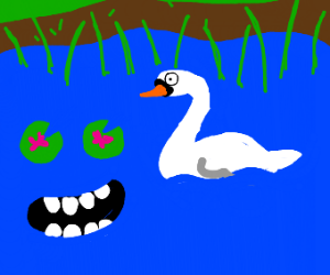 swan in sentient pond