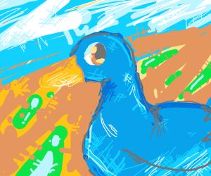 blue duck?