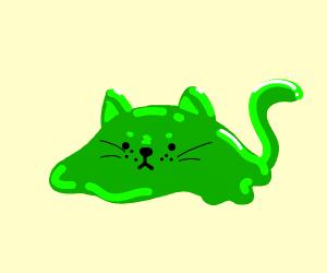 Gooey Cat