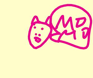 pig yelling momo