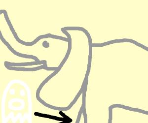 Possessed Elephant