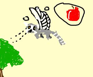 Lemur bird hugging fruit