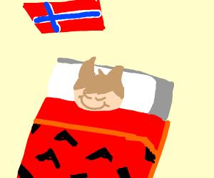 sleeping norwegian