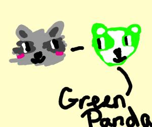 raccoon minus green panda