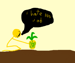 Yellow guy hates planting pineapples