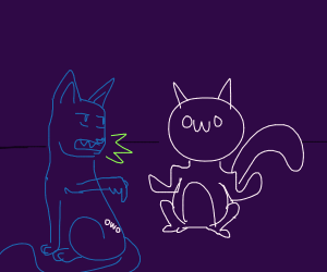 Cat is upset at owo and marks on its body