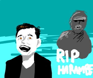 Elon Musk laughs about Harambe's death