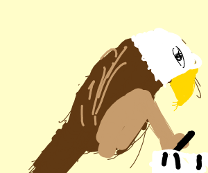 Hawk Writer