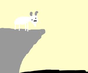 Goat on cliff