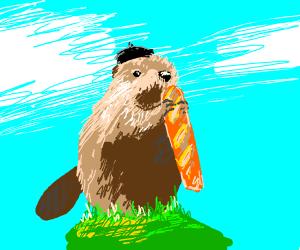 French beaver eating baguette.