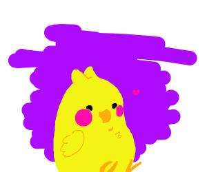 A Loving Parrot