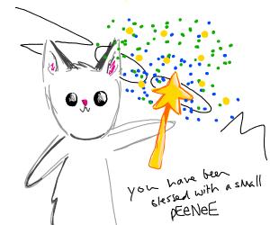 cat magics ur peenee small