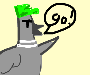 Pigeon commander yelling go