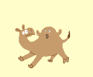 camel spooked by his hump