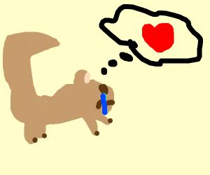 lonely squirrel seeks love
