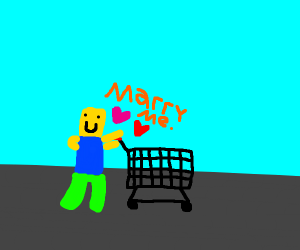 Roblox guy proposes to shopping cart