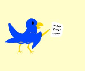 birds writing words