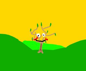 A happy lil tree