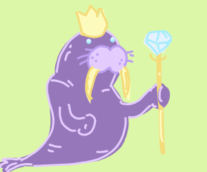 King walrus
