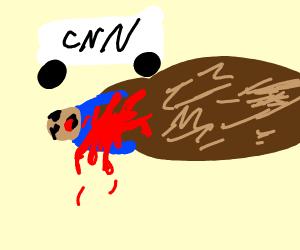 Bear attacks news network