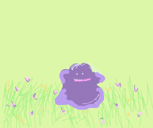 ditto in a flower field :)