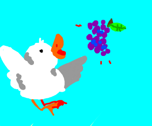 The duck wants the grapes