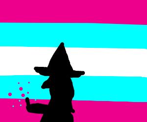 Wizard casting genderswap spell