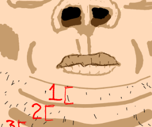 triple but chin