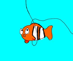 Nemo with back wire around him