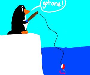 Bird fishing worms