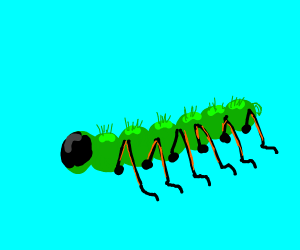 Caterpillar with ant legs