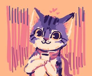 Koffee Kat